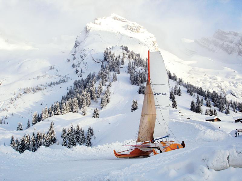 Babouche sailing on snow